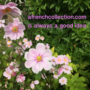 afrenchcollection.com is always a good idea