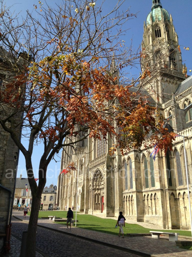 Bayeux Cathedral bathed in sunlight with autumn tree in foreground
