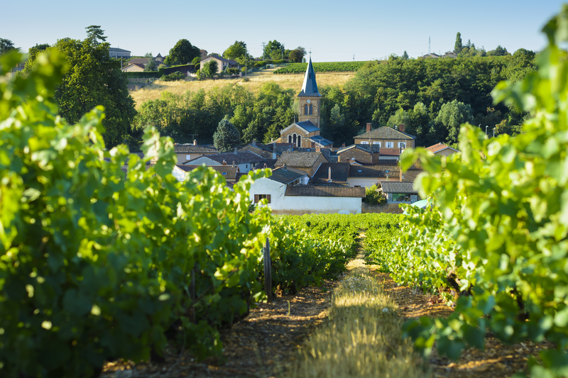 Saint Julien village in the Beaujolais Region | a french collection