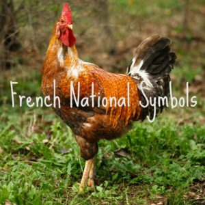 french national symbols picture